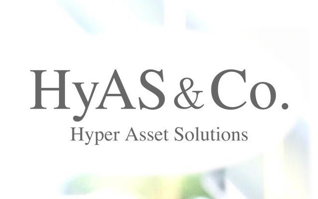 ハイアス・アンド・カンパニー 投資判断